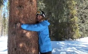 Tree Hugging in Breck, Colorado