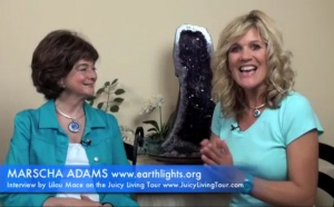 Those lights that are not UFOs - Earthlights - Marsha Adams