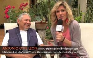 Mayan Consciousness - Abuelo Antonio Oxté - recorded in Sisbicchén, Yucatán