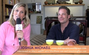 Travelling within and the yoga of beautiful living - Joshua Michaell