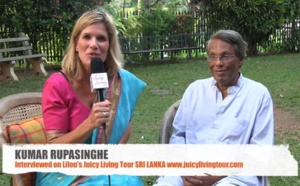 Supporting planetary consciousness - Kumar Rupasinghe